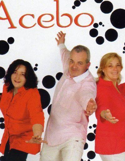 Grupo Acebo